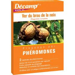 Phéromone mouche des noix
