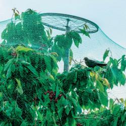 Filet anti oiseaux 2x10 m